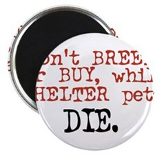 Dont Breed or Buy While Shelter Pets Die Magnets