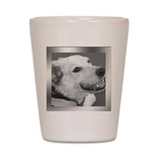 Your Photo in a Silver Frame Shot Glass
