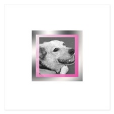 Your Photo in a Silver Frame Invitations