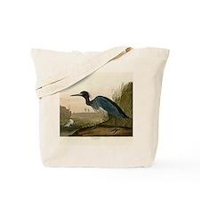 Audubon Blue Crane Heron from Birds of America Tot