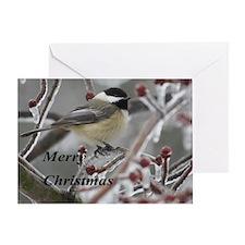 chickadee Greeting Cards