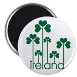 Ireland Magnet
