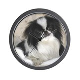 Deluxe Japanese Chin Darling Wall Clock