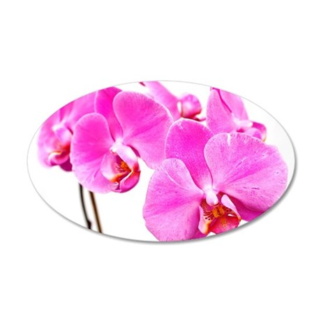 Orchid flowers Wall Decal