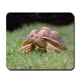 Gummer Looking Left Mousepad
