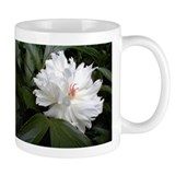 Peony Tasse