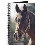 Cute Western horse Journal