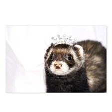 Princess Zoe Ferret Postcards (Package of 8)