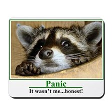 Unique Racoon Mousepad