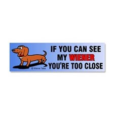 Unique Weiner Car Magnet 10 x 3