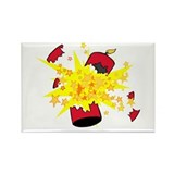 Firecracker Explosion Rectangle Magnet (100 pack)