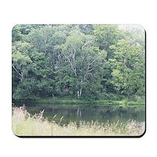 pond Mousepad