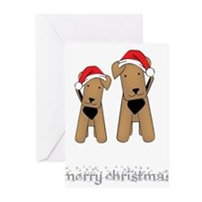 Cute Teddy Greeting Cards (Pk of 20)
