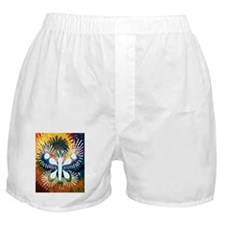 Chrysalis Rainbow Boxer Shorts