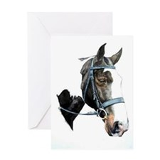 Heavy Hunter Horse Portrait Greeting Cards
