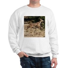 Flying Fawn Sweatshirt