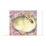 Snowy Mallard Duckling Mini Poster Print