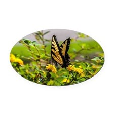Cute Butterflies Oval Car Magnet