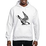 Peregrine Sketch Hooded Sweatshirt