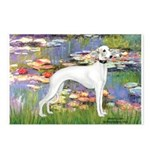 Lilies & Whippet Postcards (Package of 8)