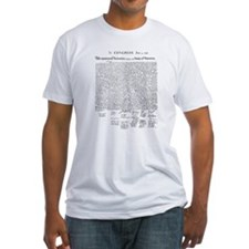 Declaration of Independence Shirt