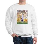 Spring / Whippet Sweatshirt