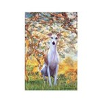 Spring / Whippet Rectangle Magnet (10 pack)