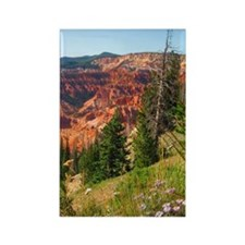 Cedar Breaks Utah Rectangle Magnet