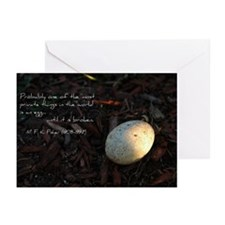 Quote Cards (Pk of 10)