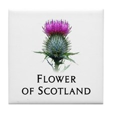 Flower of Scotland Tile Coaster