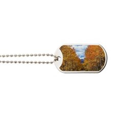Cute Aspen Dog Tags