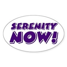 SERENITY NOW! - Decal