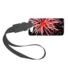 Cute Fireworks Luggage Tag