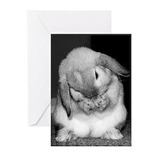 HB015-BirthdayWishes Greeting Cards