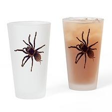 Hairy Brown Tarantula Drinking Glass