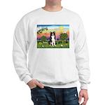 Bright Country/Border Collie Sweatshirt