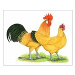 Buff Catalana Chickens Small Poster