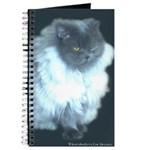 Exotic Persian Cat Journal