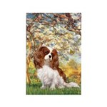Spring & Cavalier Rectangle Magnet