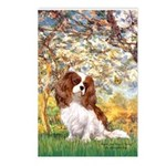 Spring & Cavalier Postcards (Package of 8)