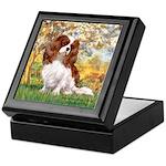 Spring & Cavalier Keepsake Box