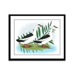 Magpie Drake and Duck Framed Panel Print
