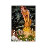Fairies & Cavalier Rectangle Magnet (10 pack)