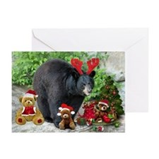 Teddy Bear Fun Greeting Cards