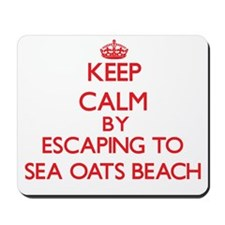 Keep calm by escaping to Sea Oats Beach Florida Mo