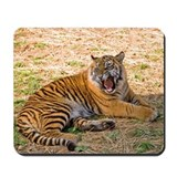 Mad Tiger Mousepad