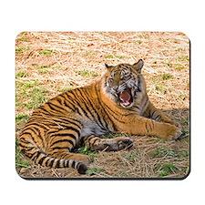 Mad Tiger Mousepad