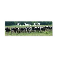 Milk Cows Car Magnet 10 x 3