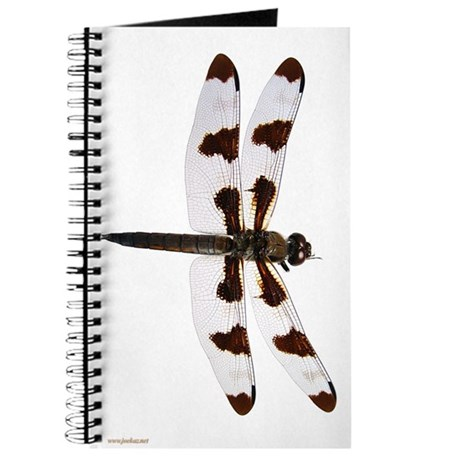 Dragonfly 2 Journal 1