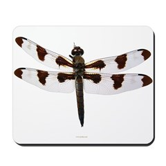 Dragonfly 2 Mousepad